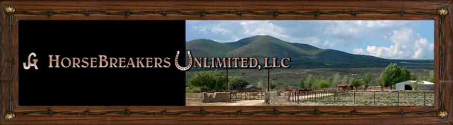 Welcome to Horsebreakers Unlimited